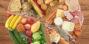 táplálék összetevői